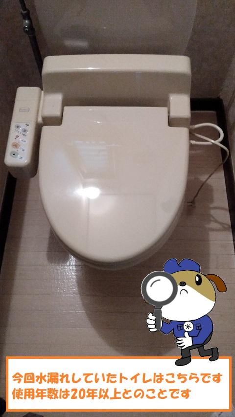 【画像】トイレ調査