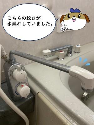 【画像】浴槽の左側に温度調節、吐水切換レバーハンドルが付いているタイプです。