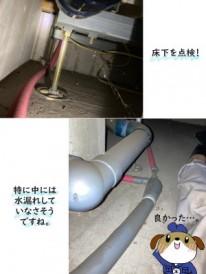 【画像】床下に潜って水漏れがないか確認しました。特に水で濡れている所はありません。