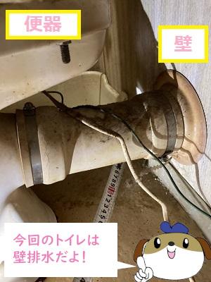 【画像】トイレには排水方式が2種類あり、今回は便器と壁に配管が繋がっている壁排水タイプです。